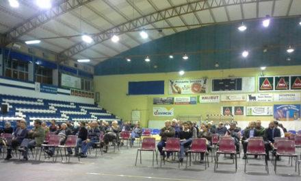 Assembleia-Geral do Clube: Informação do NAF