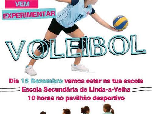 Voleibol: captações dia 18