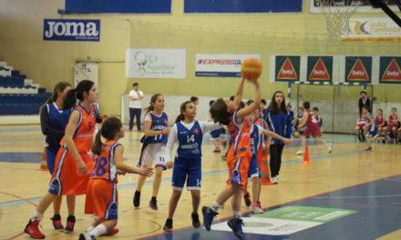 Minibasquete feminino em Viana do Castelo