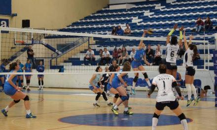 Seniores preparam-se para o Play-off final, Juniores disputam Final-8 do Campeonato Nacional