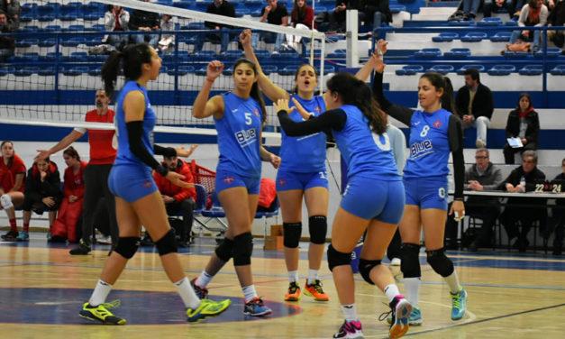 Vice-presidente Pedro Lourenço antevê um novo ciclo no voleibol azul